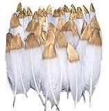 Plumas de Ganso, 40 pcs Oro Sumergido Blanco Natural Plumas de Gallo Manualidades Decoración para Disfraces Hats, Hogar Bricolaje, Ropa Casa Fiesta (accesorio de disfraz)