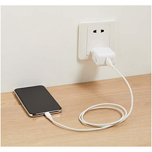 Amazon Basics - USB-Ladeadapter mit 1 Anschluss (2,4 Ampere) - Weiß