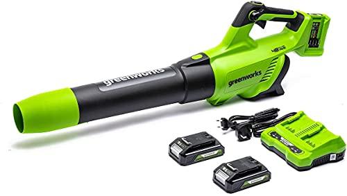 Greenworks Tools Akku-Gebläse 2 X 24V Elektrisches Kabelloses Laubsauger mit Lithium-Akku und Ladegerät