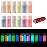 DEWEL Pigmentos Luminiscentes 12 * 20g con Lámpara UV, Pigmento Resina Fluorescente que Brillan en la Oscuridad, Polvo Luminiscente para hacer slime, Uñas, Pintura, manquillaje o DIY en casa