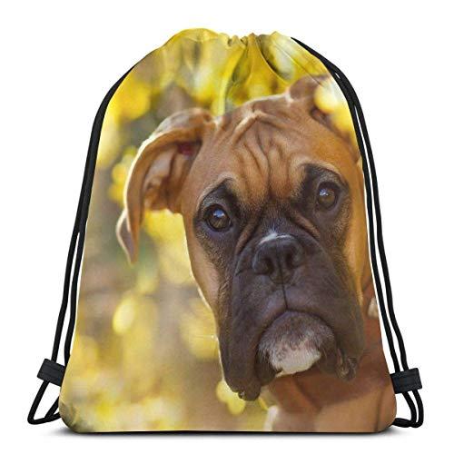 OPLKJ Boxer Bozal para perros en el jardín Relajante Bolsas de hombro con cordón personalizadas Bolsa de gimnasio Mochila de viaje Gimnasio ligero para hombre Mujer 16.9 'x14'