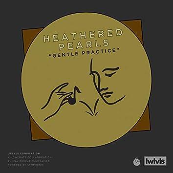 Gentle Practice