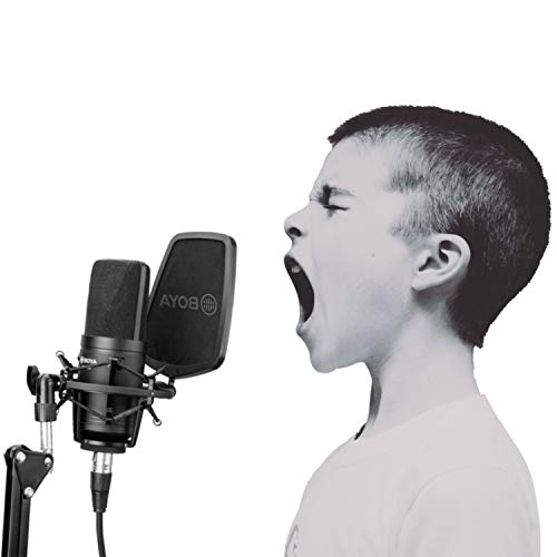 Boya Großmembran-Kondensator-Mikrofon für Studio-Sound, Aufnahme-Mikrofon für Gesangsaufnahmen Sänger Podcaster Home Audio YouTube Video