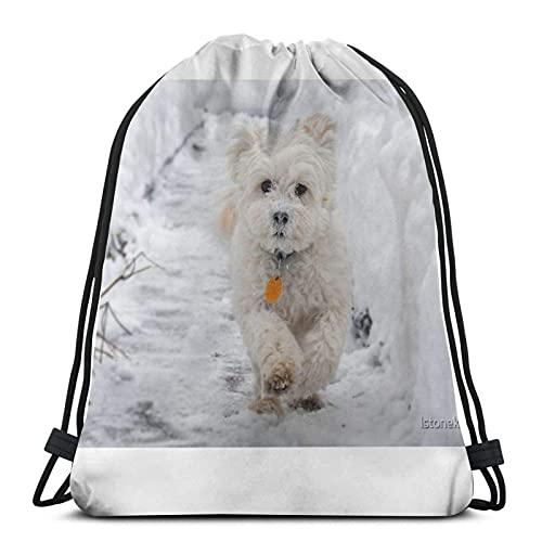 Bolsas de cordón blanco Maltipoo perro corriendo en la nieve unisex mochila con cordón bolsa de deporte bolsa de cuerda bolsa grande bolsa de asas bolsa de gimnasio mochila a granel