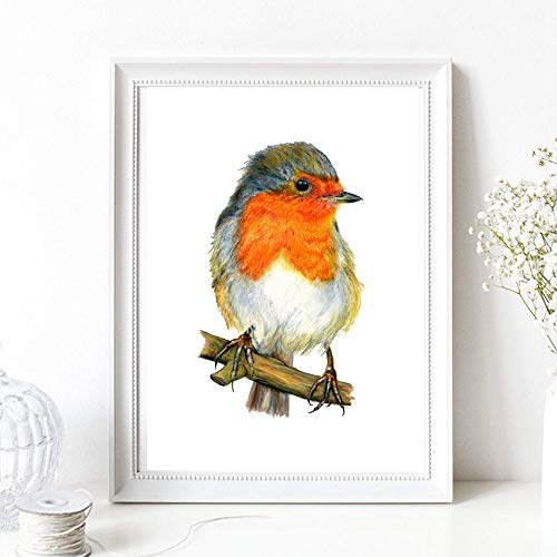 Din A4 Kunstdruck ungerahmt - Rotkehlchen auf Ast Vogel Natur Zeichnung Malerei Druck Poster Bild