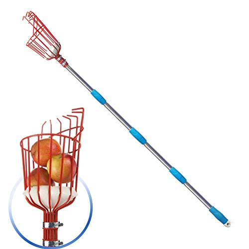 GLORYA Fruit Picker  8ft Length Adjustable Lightweight Fruit Catcher Tool  Stainless Steel Apple Orange Pear Mango and Other Fruit Tree Picker Pole with Basket