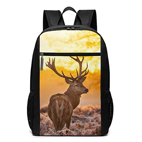 IUBBKI Autumn Tree Antlers Deer (12) Casual Daypacks Fashion Popular Multipurpose Daypacks High Capacity Business Laptop Backpacks Hiking Daypacks
