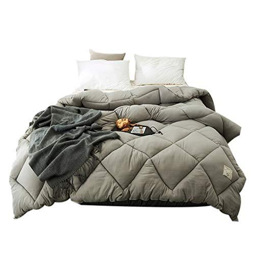 MMM Quilt d'hiver plus épais Conservez l'édredon chaud Espace de base Coton Double climatisation Literie couchage 2.0m Lit (Couleur : #1, taille : 220 * 240cm(3.5kg))