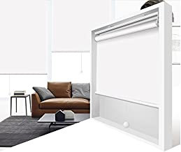 ZY Blinds Cordless Roller Shades 100% Blackout Custom Made UV Protection Enery Saving Block 100% Light Window Shades Blinds for Home, Hotel, Club, Restaurant 59