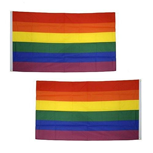 2 Stück Regenbogen Flagge Gay Flagge Gay Pride Flagge LGBT Flagge Regenbogenfahne Rainbow Flag Gay Flag Aufhängen Regenbogen Gay Stolz Parade Flagge für die Schwulenparade (150 x 90 cm)