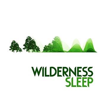 Wilderness Sleep