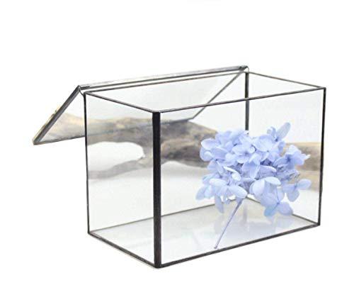DingSheng rechthoekige Cuboid bureau helder glas geometrische terrarium box met deksel tafelblad vetplant mos plant bloempot 8,26 inch 21 * 12 * 14 cm 17 * 10 * 12CM
