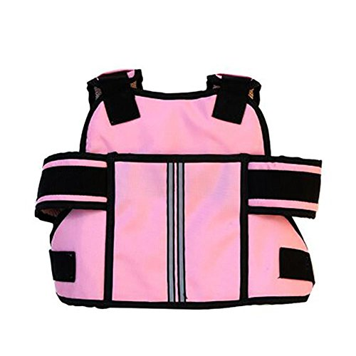 BRLIGE Arnés de seguridad para niños con cinturón de seguridad para motocicleta, bicicleta, avión y autobús (rosa)