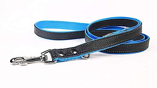 Capadi K0183 Verstelbare hondenriem van echt duurzaam leer gevoerd met sterk nylon, blauw, breedte 12 mm, lengte 220 cm