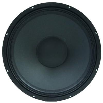 "Seismic Audio - 15"" Raw Speaker Woofer Replacement PRO AUDIO PA/DJ by Seismic Audio Speakers, Inc."