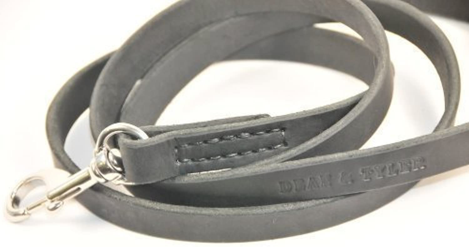 Dean and Tyler No Assumptions Stitched Leather Leash, Black 5Feet by 3 4Inch Width with Stainless Steel Hardware