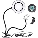 10X Large Magnifying Glass with Bright Light, Hands-Free Magnifier Double Gooseneck Magnifier 2 in 1 Clamp Table & Desk Magnifier with Phone Clip, Chip Clip Great for Reading, Hobbies, Crafts