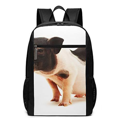 Schulrucksack Mini Ea, Schultaschen Teenager Rucksack Schultasche Schulrucksäcke Backpack für Damen Herren Junge Mädchen 15,6 Zoll Notebook