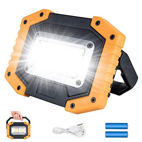 Plartree Foco LED 30W,USB Recargable 2000LM Luz de Trabajo LED, 3 Modos,COB Luces de Camping Impermeable para Garaje,Pesca,Senderismo,Camping,Luces de Seguridad de Emergencia(2 Batería Incluida)