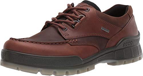 ECCO mens Track 25 Gore-tex Hiking Shoe, Bison/Bison Oil Nubuck, 9-9.5 US