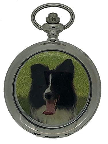 Westime Border Collie Dog Full Hunter orologio da tasca e catena