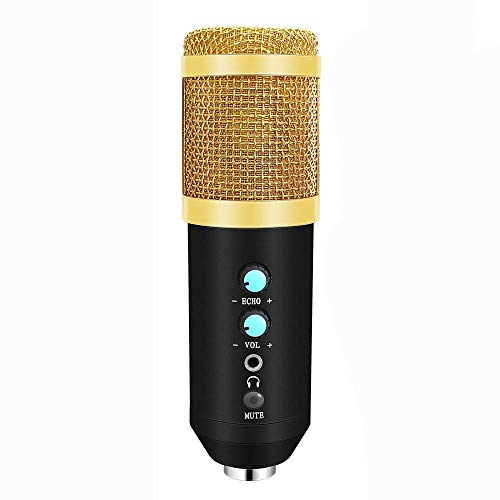 SFBBBO microphone 2020 Usb Microphone For Laptop Pc Condenser Mic Kit Microphone For Live Broadcast Record 3