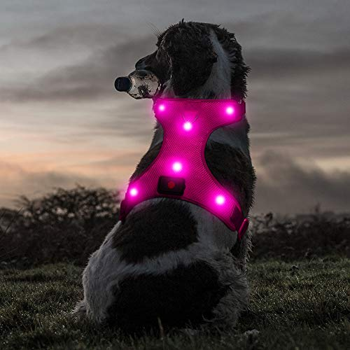 "Ezier Glowing LED Dog Harness- USB Rechargeable No-Pull Pet Harness, Adjustable Soft Padded Dog Vest, Mesh Reflective Suit for Small, Medium, Large Dogs(S [Neck:13.5""-18""; Chest:18""- 26""], Pink)"