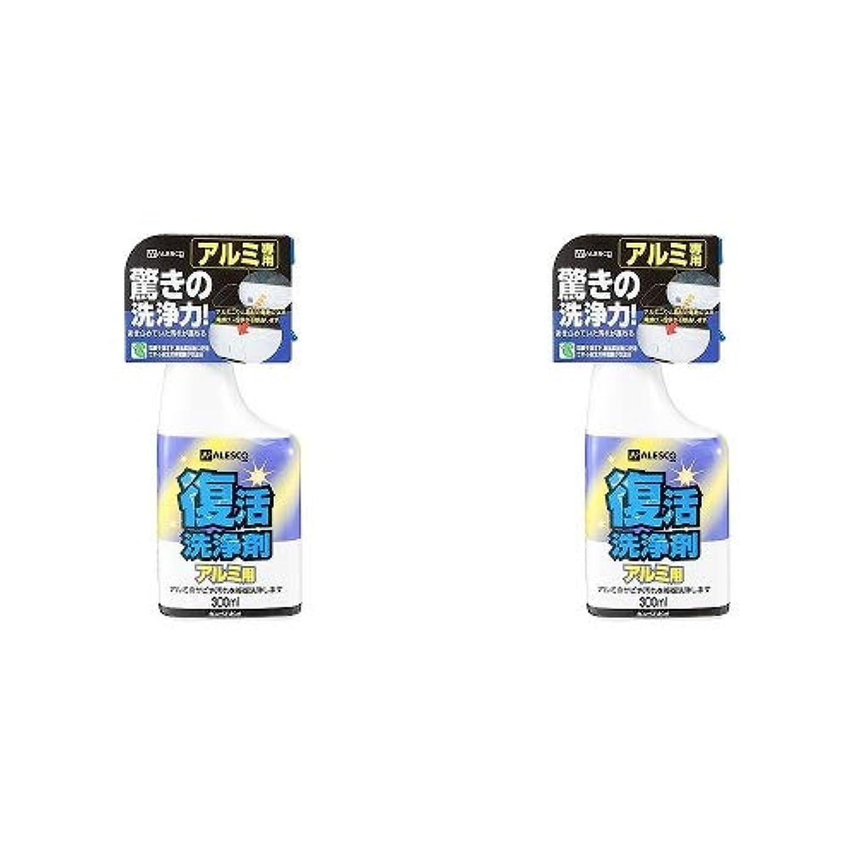 症状招待強大なカンペハピオ 復活洗浄剤 アルミ用 300ML 2缶セット