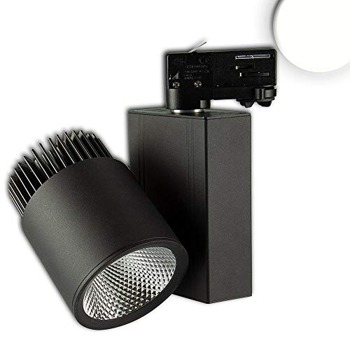 Foco LED de 3 fases (36 W, 38°, 4000 K, CRI82), color negro mate