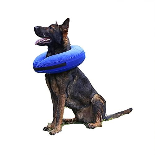 TT.WALK Collari protettivi e Coni per Cani Collare Cane Protettivo Gonfiabile Collare Regolabile per Cane Gatto Ferita Recupero Guarigione Collare(Blu,XL)