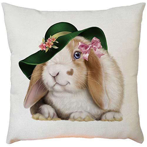 Moent Funda de almohada de conejo de Pascua, cuadrada, para sofá, cama, coche, decoración del hogar, cierre de cremallera oculta, regalo de festival (D-1 unidad)
