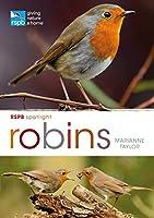 Robins (RSPB Spotlight)