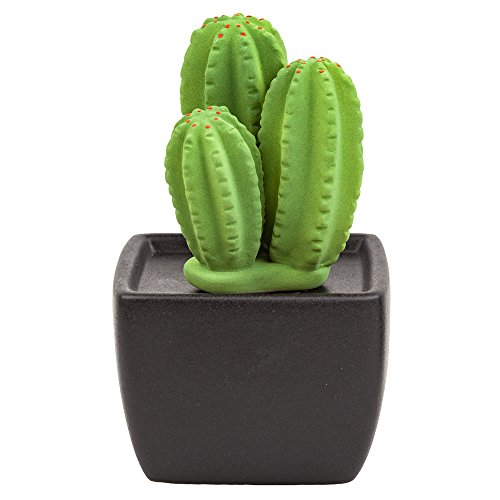 Lively Breeze Tri Cactus, Non-Electric Ceramic Diffusers for Essential Oils and Aromatherapy Fragrance, White Ceramic Diffusers in Car or Desk Office Decor and Small Bathroom at Home, Black Vase