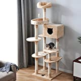 PURLOVE Cat Kitten Tree, 175cm Cat Tower Activity Centre with Sisal Scratching Posts/Condo/Dangling