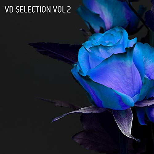 Vd Selection, Vol. 2