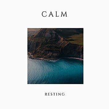 # 1 Album: Calm Resting
