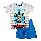 Le fantasie di casa Pigiama Estivo in Cotone Due Pezzi Azzurro Thomas And Friends per Bambini 2-3-4-5-6 Anni. (cm 104)