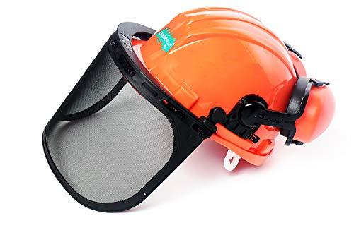 LABONVILLE Forestry Helmet