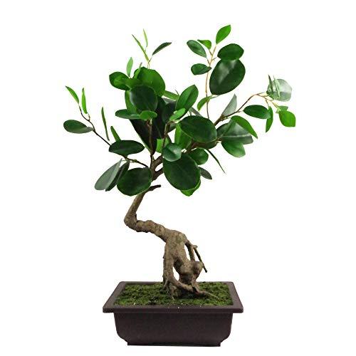 Leaf Albero Artificiale a Foglia, Bonsai Arrotondato Ficus, 50 cm