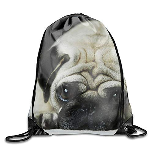Lawenp Lazy Pug Sackpack Mochila con cordón Mochila Impermeable Gymsack Daypack para Hombres Mujeres