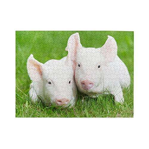Rompecabezas de 500 piezas,dos lechones en pasto verde,granja de cerdos,animales,granero,cría de animales,agricultura_shutterstock_111829394,juego de rompecabezas para familias numerosas