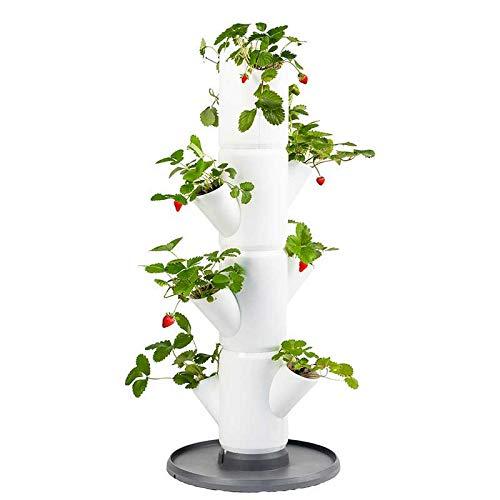 GUSTA GARDEN Sissi Strawberry (Starter, weiß) - Pflanzgefäß/Topf/Pflanzturm/Hochbeet für Erdbeeren - für Balkon, Garten und Terrasse - Erdbeeren und Kräuter anpflanzen