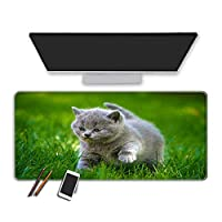 ネコアクセサリマウスパッドゲーマーマウスパッドキーボードPCパッドマウスパッドゲーミングマウスパッドC_XL(30x80cm)