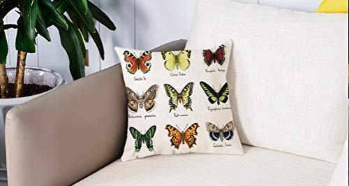 Square Soft and Cozy Pillow Covers,Mariposa, Acuarela Estilo Primavera Insectos Urania Helius Saturnia Pavonia Animal Design, Mult,Funda para Decorar Sofá Dormitorio Decoración Funda de almohada.