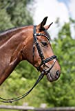 Horse&Passion 920030/11598 Valerie Cabezada de Montar, Negro, Cristales Negro / Blanco, Talla única