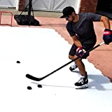PolyGlide Synthetic Ice Home Kit (As Seen on Shark Tank!) 4 Panels/Box