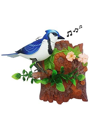 Unido Box Wärme Sensor Zwitschernder Vogel mit Sweet Sound und Body Move als Es zwitschert Vertical Blue Jay