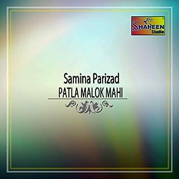 Patla Malok Mahi - Single