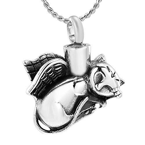 JJPRFO Collar de Recuerdo de Perro/Gato con Forma de urna Colgante de cremación de Acero Inoxidable...