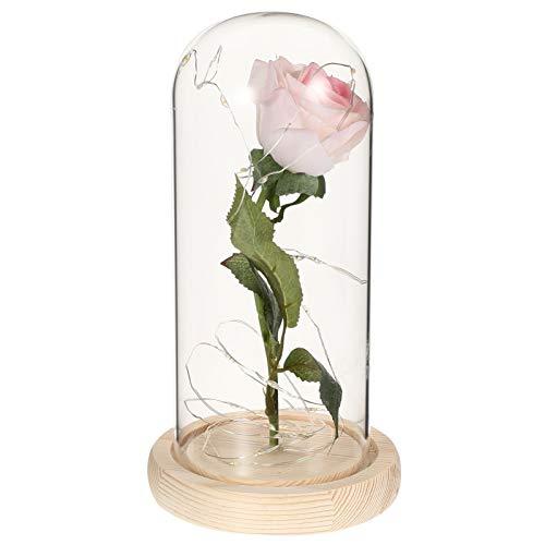 Veemoon Rosa Artificial en Cúpula de Vidrio Día de San Valentín Flor de Rosa con Led Cadena de Luz Eterna Rosa Preservada Lámpara de Noche para Cumpleaños
